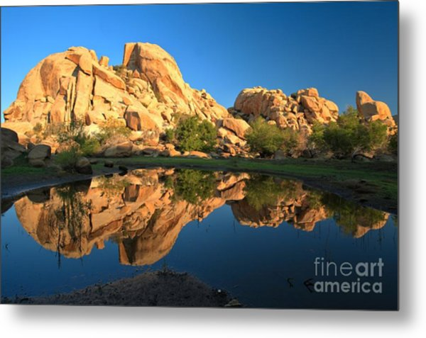 Oasis Reflections Metal Print
