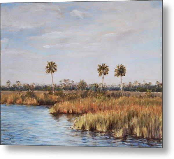 Ochlockonee River Palms Metal Print