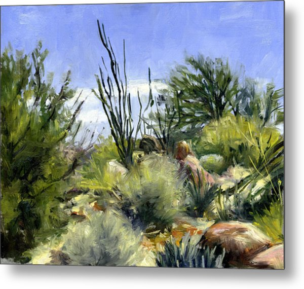 Ocotillo And Scrub Brush Metal Print by Stacy Vosberg
