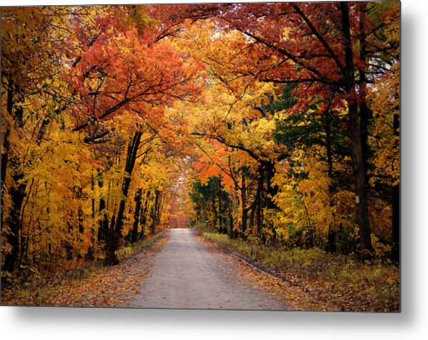 October Road Metal Print