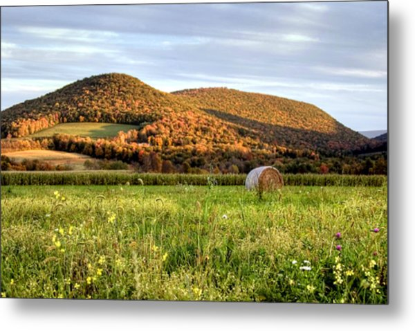 October Wildflowers And Haybale Metal Print