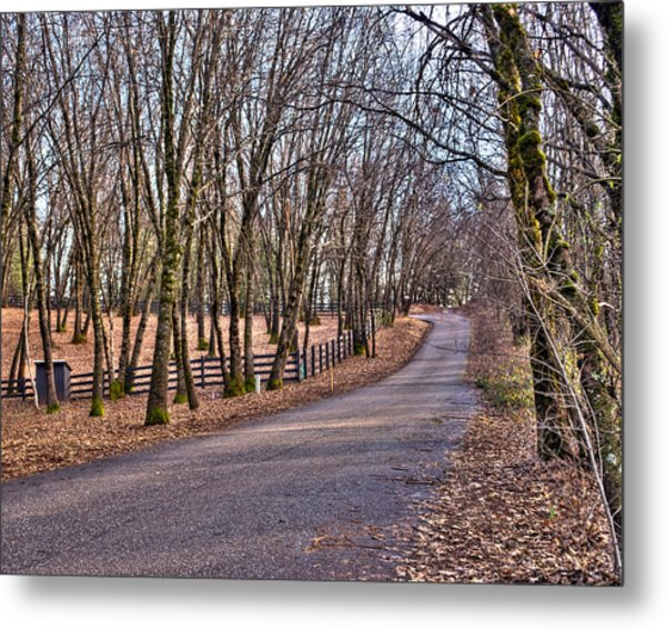 Metal Print featuring the photograph Off Rattle Snake Road by William Havle