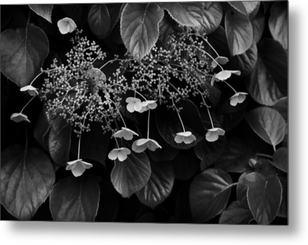 Off The Wall Metal Print by Don Powers