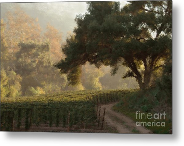 Ojai Vineyard Metal Print