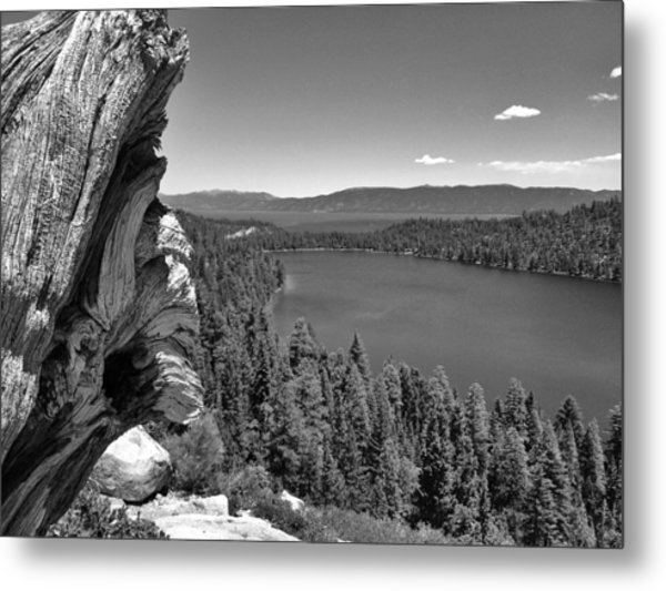 Old And New Of Cascade Lake B And W Metal Print