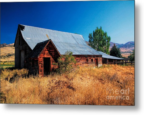 Old Barn And Shed Metal Print