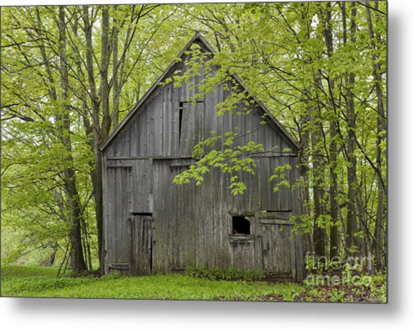 Old Barn In Spring Woods Metal Print