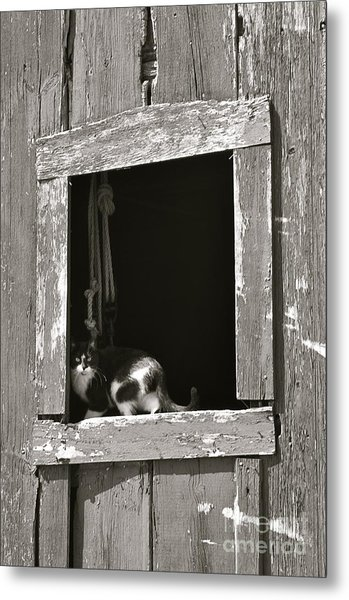 Old Barn Window Metal Print