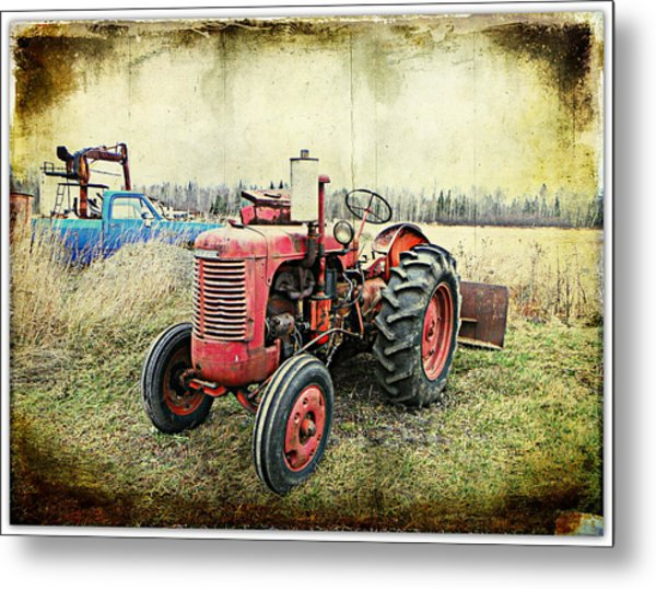 Old Buddies  Metal Print by Dianne  Lacourciere