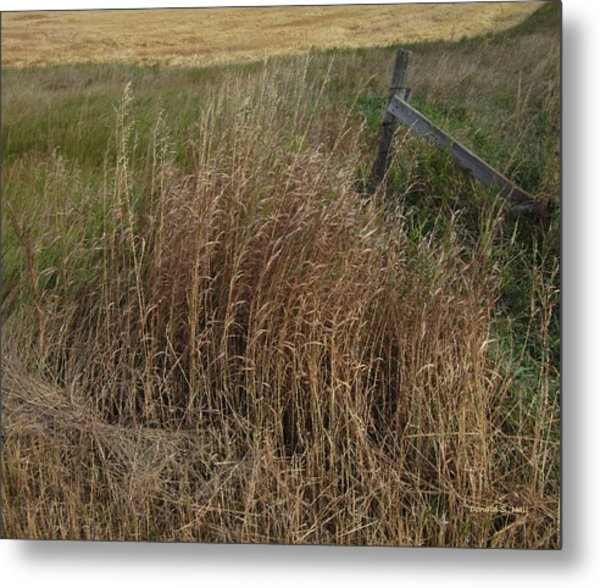 Old Fence Line Metal Print