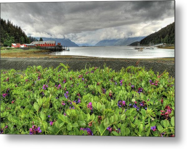 Old Haines Cannery Metal Print