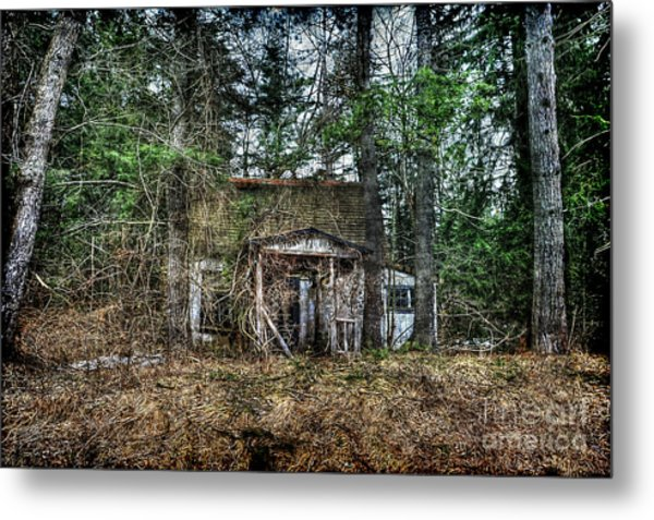 Old House With Overgrown Brush Metal Print by Dan Friend