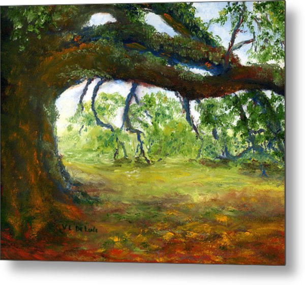 Old Louisiana Plantation Oak Tree Metal Print