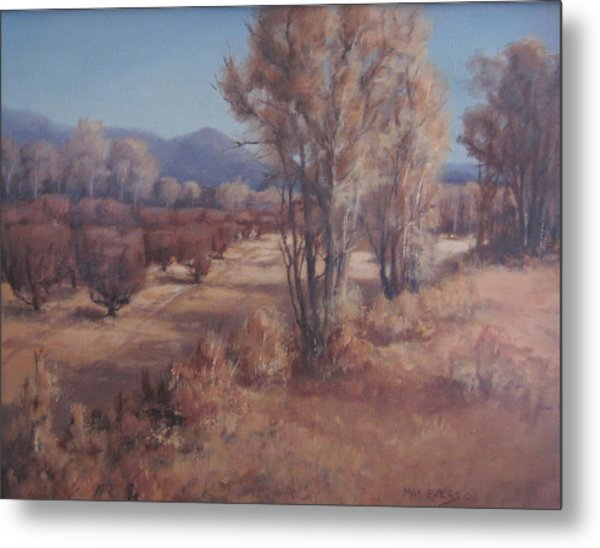 Old Orchard Metal Print by Mar Evers
