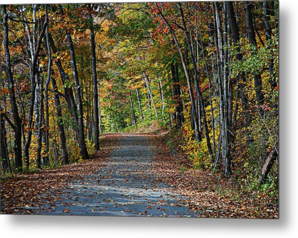 Old River Road North Creek  Metal Print