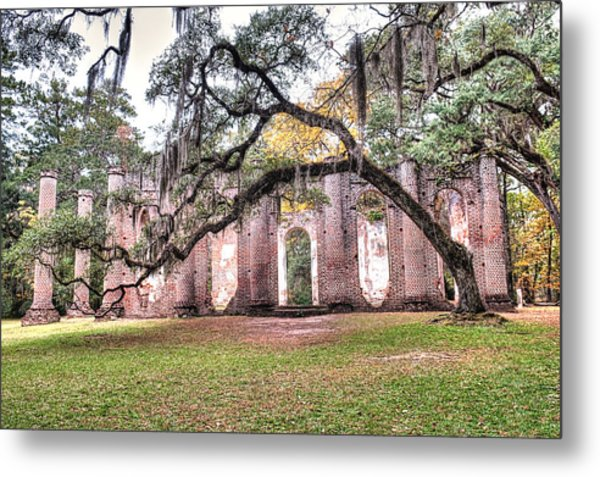 Old Sheldon Church - Bending Oak Metal Print