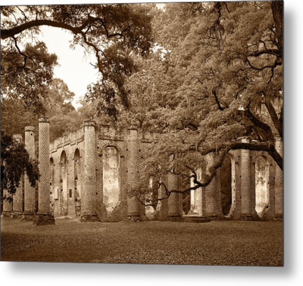 Old Sheldon Church - Sepia Metal Print