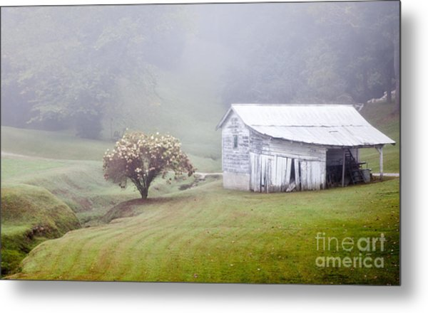 Old Weathered Wooden Barn In Morning Mist Metal Print