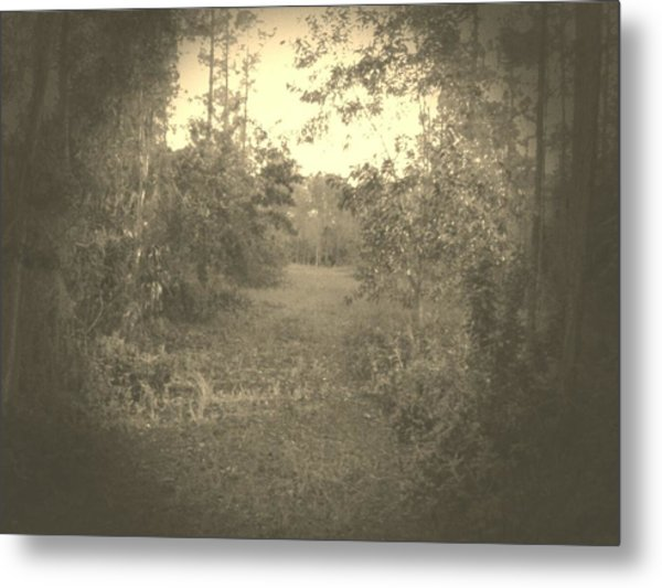 Olden Look Metal Print by Chasity Johnson