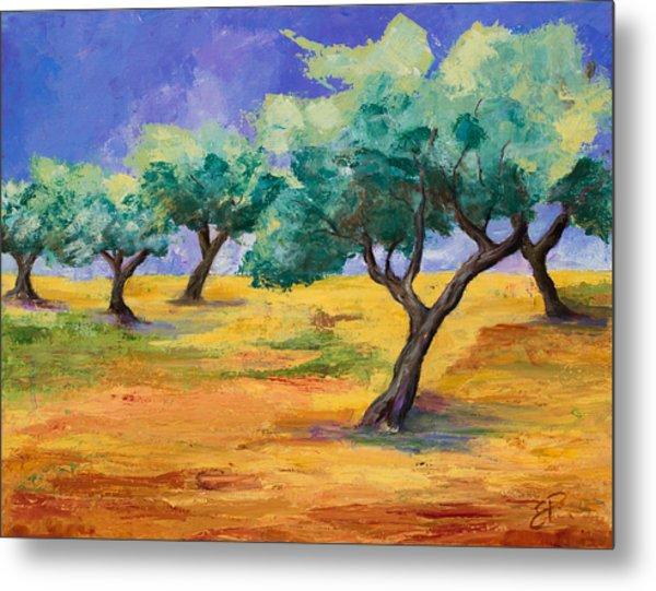 Olive Trees Grove Metal Print