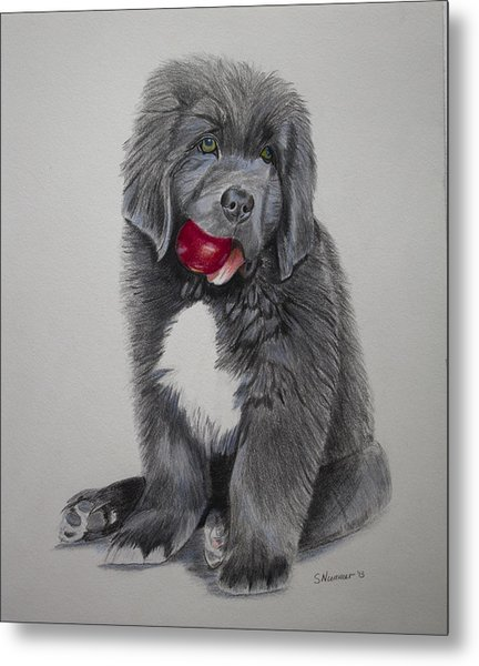Oliver's Red Ball Metal Print