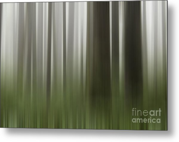 Olympic Trees Metal Print