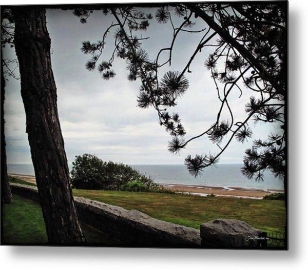 Omaha Beach Under Trees Metal Print