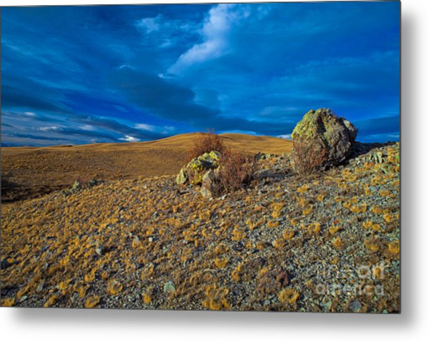 On A Blue Day Metal Print