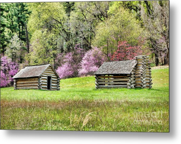 On A Hill At Valley Forge Metal Print
