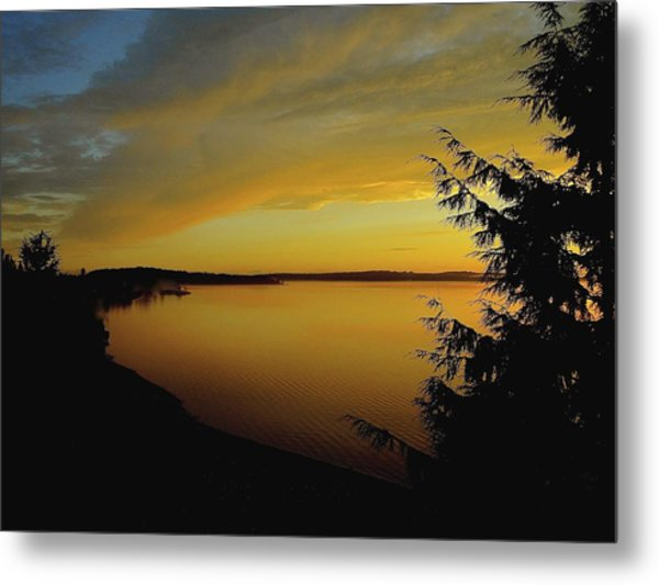 On Golden Puget Sound Metal Print