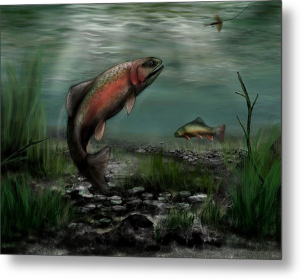 On The Attack - Rainbow Trout After A Fly Metal Print