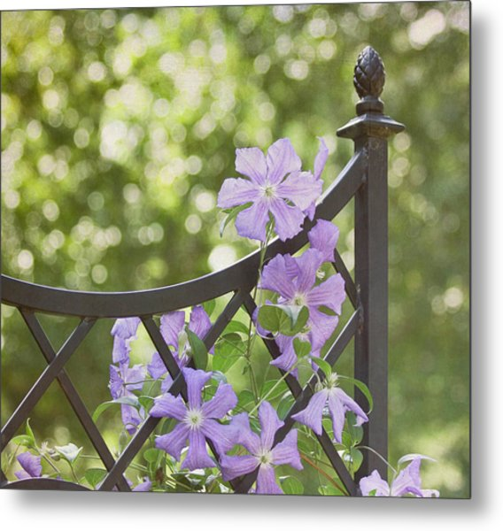 Metal Print featuring the photograph On The Fence by Kim Hojnacki
