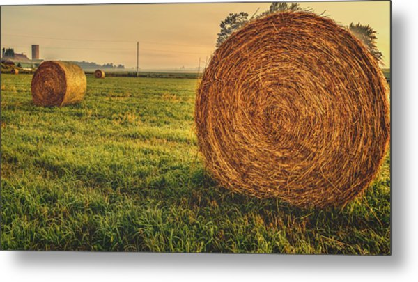 On The Field  Metal Print
