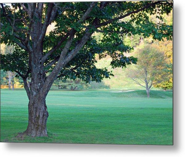 On The Golf Course Metal Print by Gloria Merritt