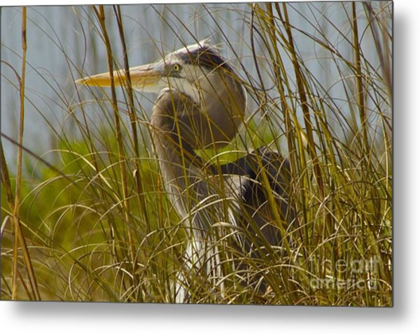 On The Gulf Metal Print