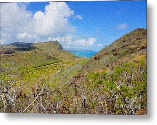On The Hill Ocean Look Out Metal Print by Nur Roy