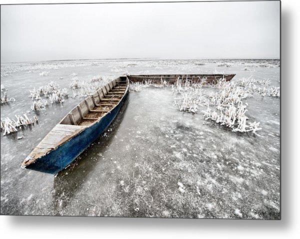 On The Ice... Metal Print