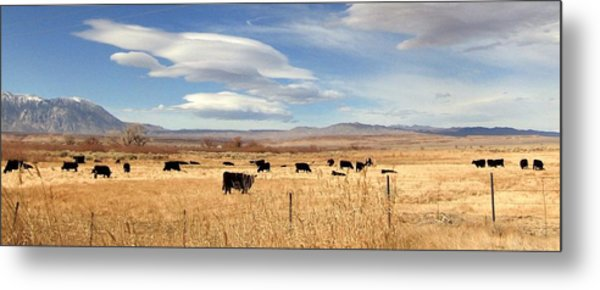 On The Open Lands Metal Print