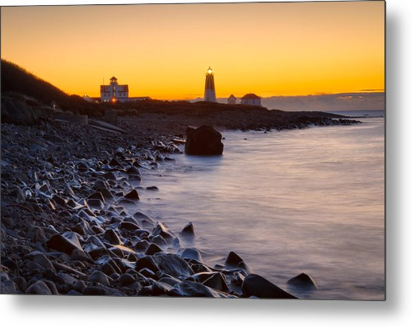 On The Point Metal Print