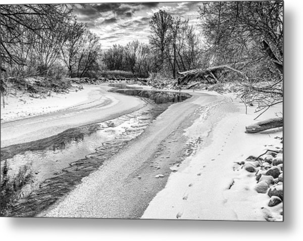 On The Riverbank Bw Metal Print