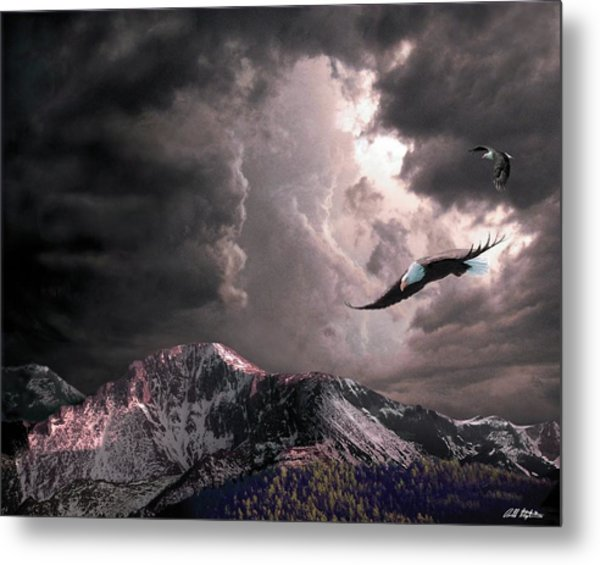 On Wings Of Eagles Metal Print