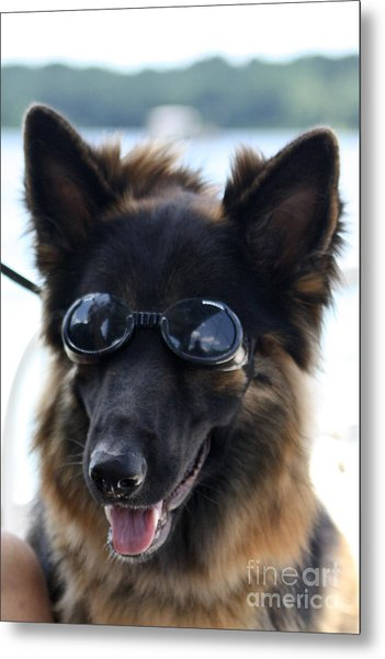 One Cool Dude Metal Print