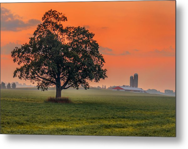 One Fine Morning Metal Print