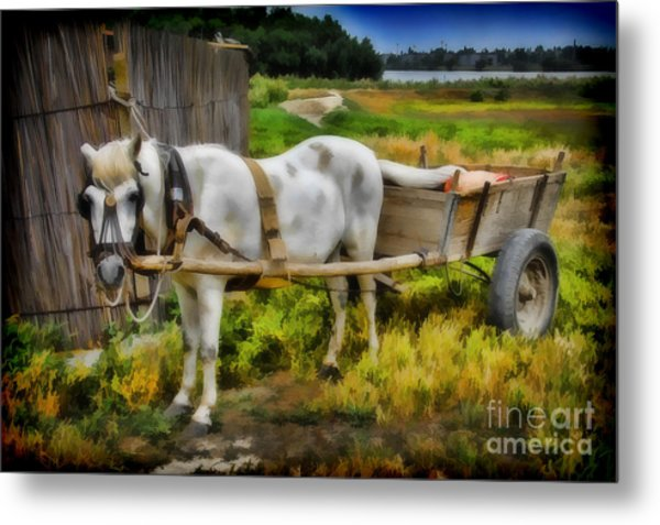 One Horse Wagon Metal Print