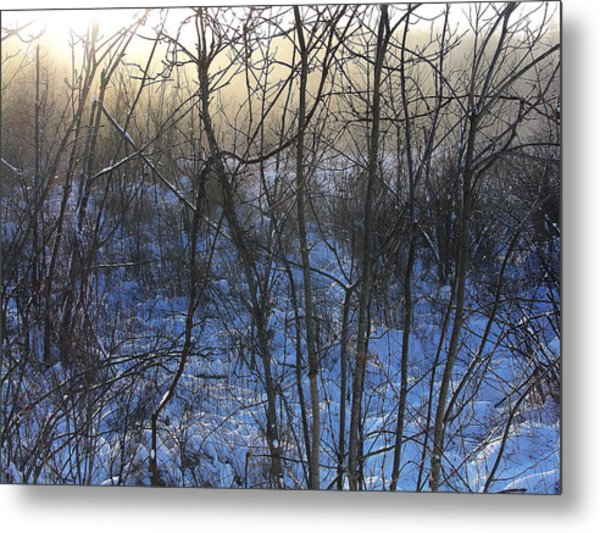 One Solstice Morning In Palenville The Light Broke Through The Dew Metal Print by Terrance DePietro
