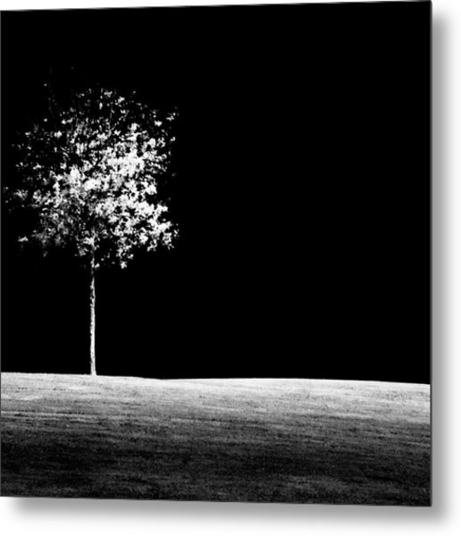 One Tree Hill Metal Print
