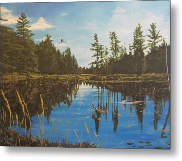 O'neal Lake Metal Print