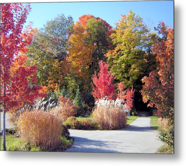 Ontario In The Fall Metal Print by Gaetano Salerno