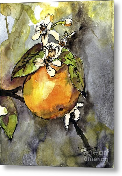 Orange Blossom Botanical Watercolor And Ink By Ginette Metal Print