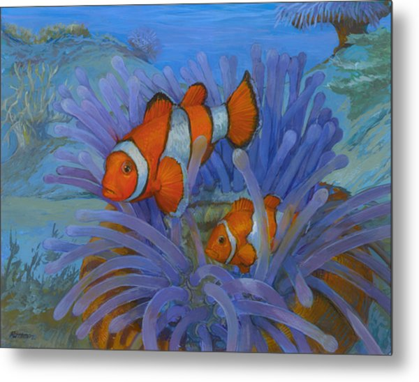 Orange Clownfish Metal Print by ACE Coinage painting by Michael Rothman